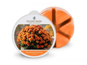 Goose creek Blooming Harvest wax melts