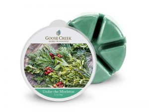 Goose creek under the mistletoe wax melts